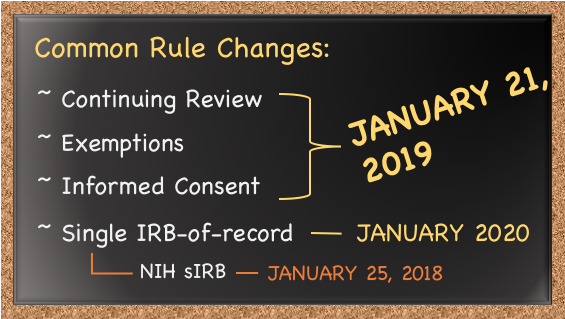 "Blackboard listing the 2018 Common Rule changes with an ""on hold"" label"